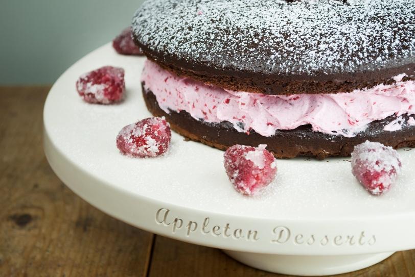 Raspberry Cake 2